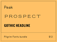 Summer Sale at Pilgrim Fonts