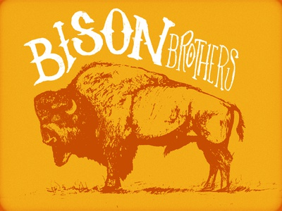 Our Bison Brothers