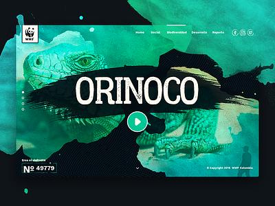 Orinoco WWF color al cuadrado watercolor website orinoco wwf