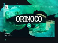 Orinoco WWF