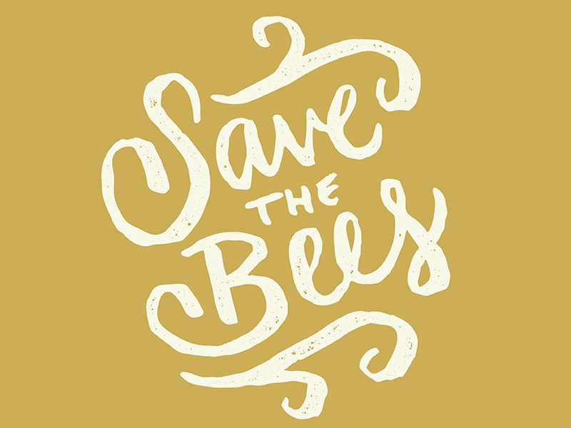 Save The Bees Campaign flowers planting pollination cause activist awareness campaign bee bees save save the bees