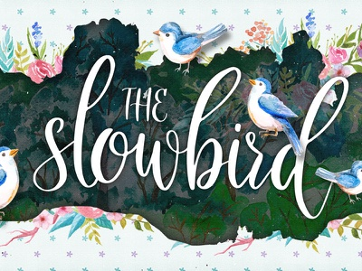 The Slowbird - Typeface free fonts creativemarket typography calligraphy hand lettering handlettering lettering typeface fonts font