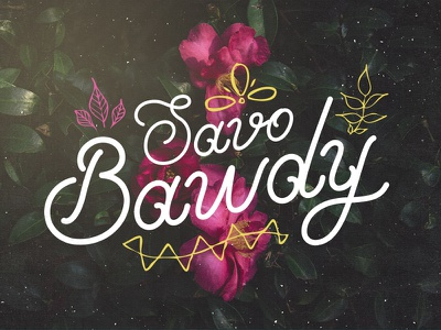 Savo Bawdy - Typeface seb lester callie hegstrom nicky laatz ian barnard calligraphy type typography cursive font fonts font