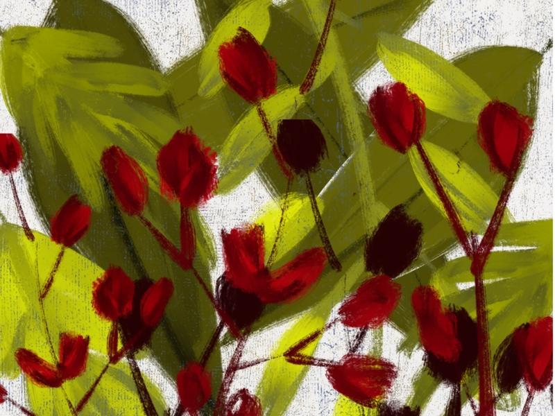 Wildflowers 1 digitalpainting adobefresco procreate surfacedesign illustration graphicdesign design