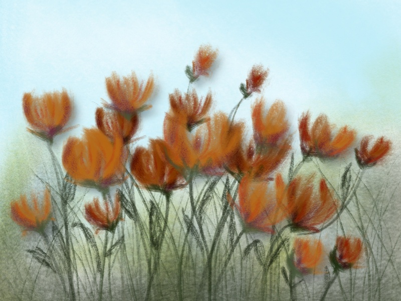 Field of Poppies digitalpainting adobefresco procreate illustration graphicdesign design