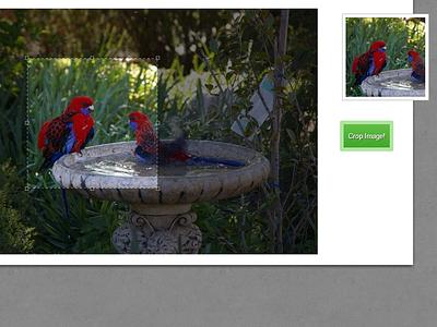 Image Avatar Crop w/ jQuery jcrop jquery plugin cropping avatar ui interface profile photo image tutorial opensource freebie