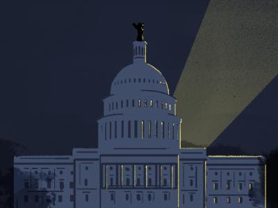 Congress illustration editorial congress texture