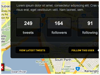 User Details ui app google yellow dark twitter tweet web app