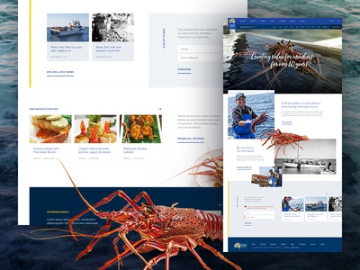 Members Owned Mockup crayfish lobster web ui marketing layout homepage grid finance design concept