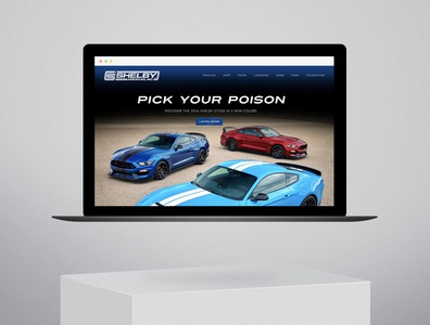 Shelby Web Design