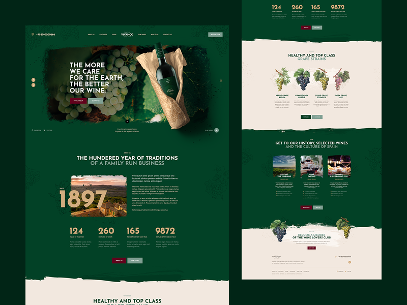 Vivanco 🍇 branding vector ux ui grunge illustration onepage landingpage winery vineyard wine webdesign webdesigner website web