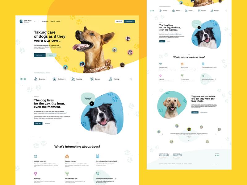 Club Pups 🐶 care dogs animal poland design illustration ux ui dog pets landingpage onepage webdesigner webdesign website web