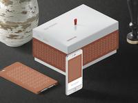 INNA KORUBA Cosmetology & Image Design | Box and iPhone