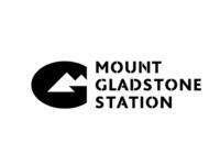 Mt Gladstone Concept