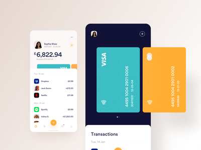 My Cards navigation add user history transactions visa debit cards icon ios dailyui app minimal ux mobile web design ui
