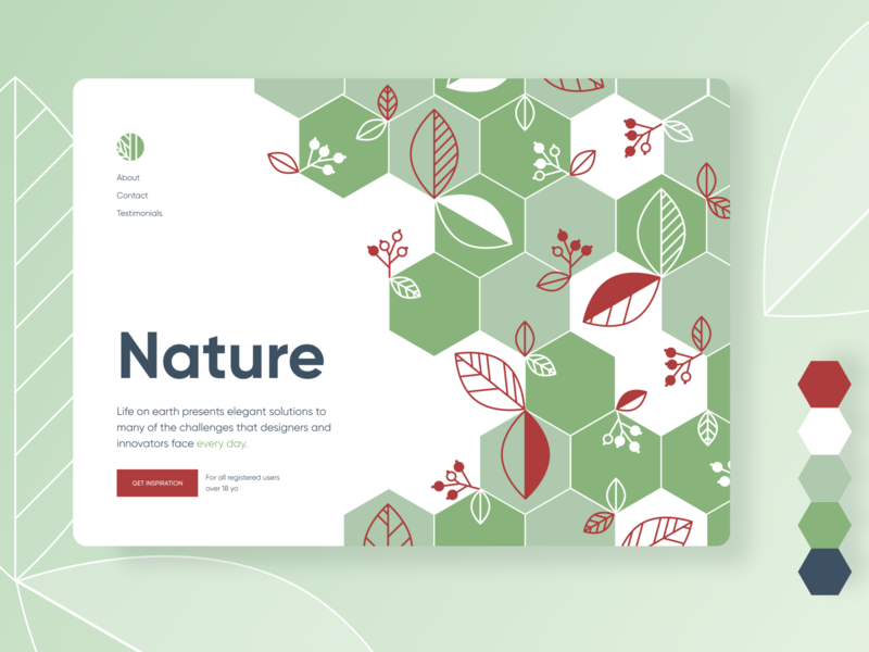 Nature pattern in design lines geometry hexagon leaves berries nature pattern vector illustration ui inspiration design