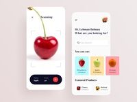 AR Fruits Application Design