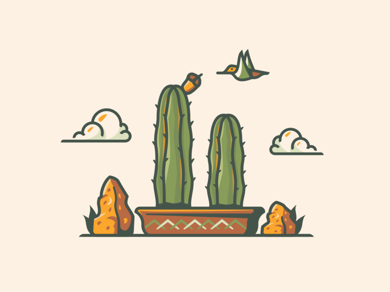From the Garden polinate flower desert southern website web illustration scene hummingbird feature illustrations illustrator cactus garden plants illustration