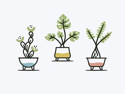 Plants & Pots pottery art icon design illustrator philodendron cactus houseplants icons illustration nature plants