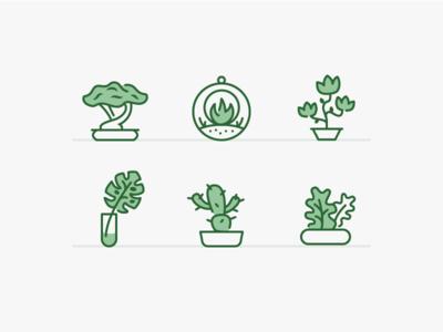 Plants & Pots feature illustrations feature icons app icons web icons illustrated icons iconography icon set icon designer icon design icons flower cactus terrarium bonsai pot nature plants