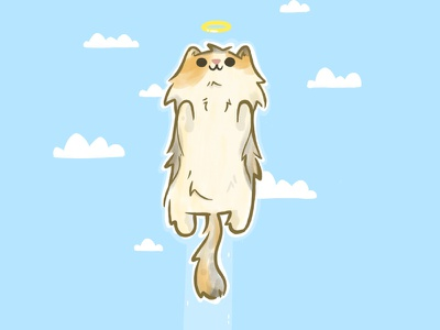 Symba you will be missed. rip angel heaven memory cat cartoon character design cute best friend