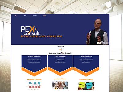 Simple Webdesign for Consulting-Business website wordpress elementor design