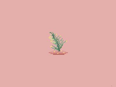 pixelplant