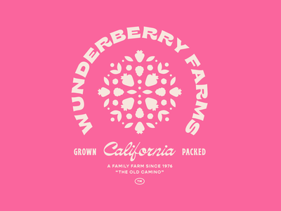 Wunderberry Farms california farm berry illustration identity packaging branding mark logo