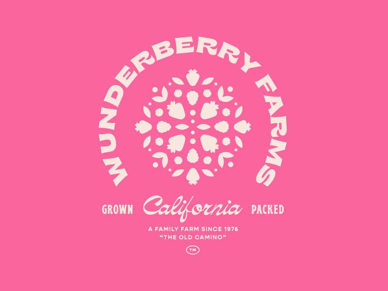 Wunderberry Farms california farm berry illustration identity packaging branding mark logo