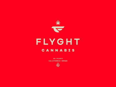 Flyght Cannabis pot cannabis packaging identity branding icon brand type mark logo