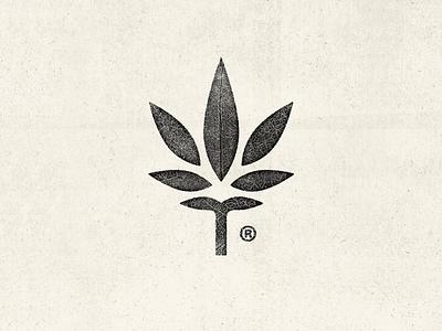 Growers mark leaf logo growers grow leaf cannabis pot weed