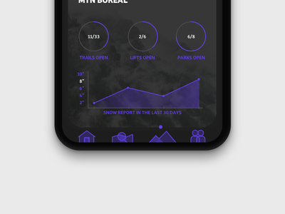 Mountain Report visual graph ui winter app ios iphone iphonex report mountain
