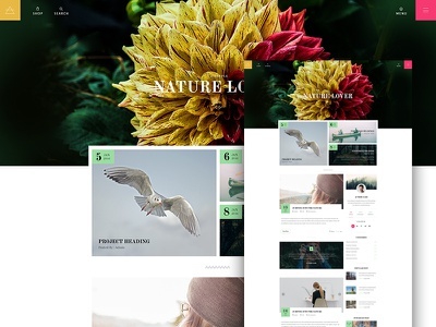 Blog : Nature Lover interface website freelancer blog follow post redesign icon search social ux ui