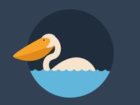 Landscape-Pelican