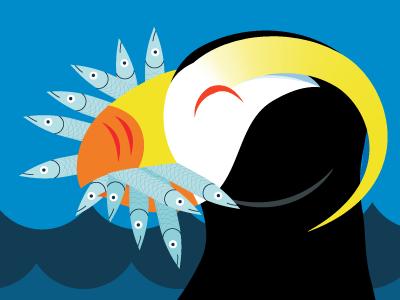 Tufted Puffin—Seattle Aquarium 2016 kids bird advertising ngo non-profit zoo museum flat vector illustration cartoon animal