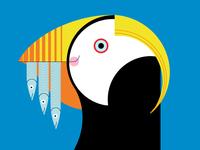 Tufted Puffin Alt.—Seattle Aquarium 2016