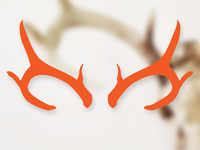 Day 18: Antlers