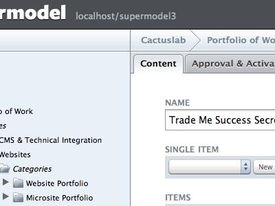Supermodel 3 cms interface web grey tabs