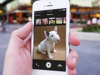 Woof App Camera