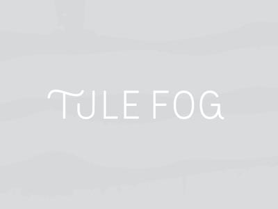 Tule Fog | Primary Logo Concept thin simple modern custom type typography identity branding