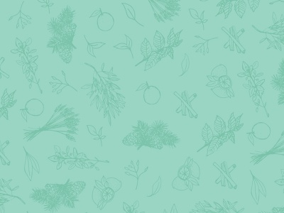 The Pure Joy Co. pattern plants brand identity branding plant illustration hand drawn