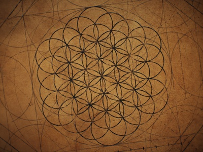 Flower of Life - Textured animation illustration old paper renaissance victorian geometric geometry circular flower of life overlapping blueprint vintage aftereffects da vinci pattern circles circle