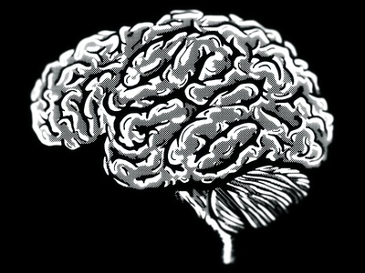 Paradowski Brain T-Shirt Design paradowski brain t-shirt