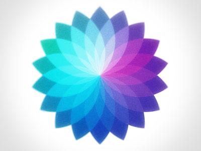 Bloom logo bloom blue purple vector flower