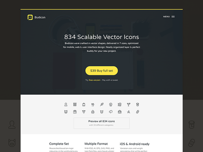 Budicon Website website web landing budicon icon ui modern simple