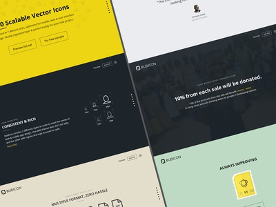 Budicon Website [Redesign]