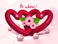Te iubesc - I love you