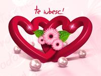 Te iubesc - I love you