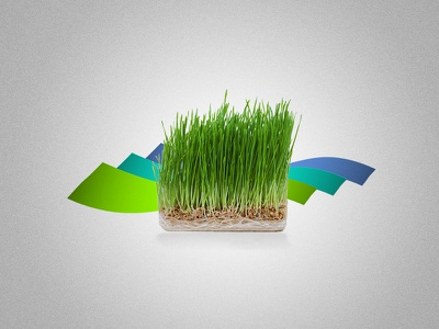 Illustration for Iranian New Year and start of spring: Nowruz iranian nowruz cat grass green