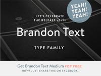 FOR FREE! Brandon Text Medium